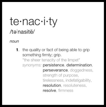 LEADERSHIP TENACITY
